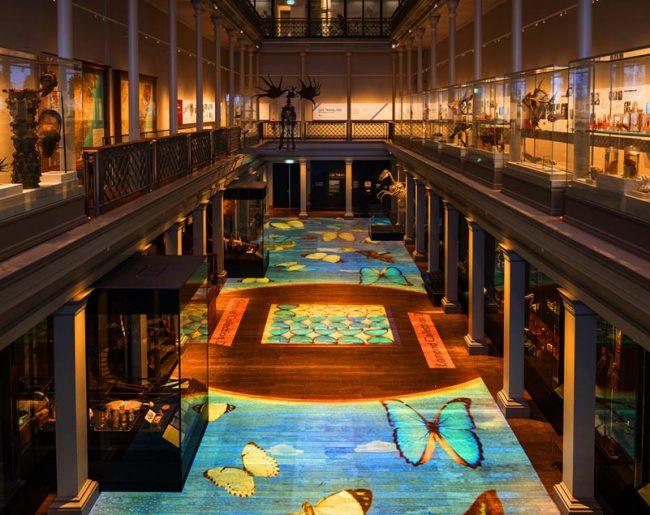 Treasures Illuminated – Australian Museum